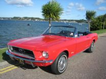 FORD MUSTANG - 1968 - LHD