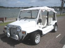 MINI SCOUT (MOKE) 1984 ONLY 867 miles FROM NEW !
